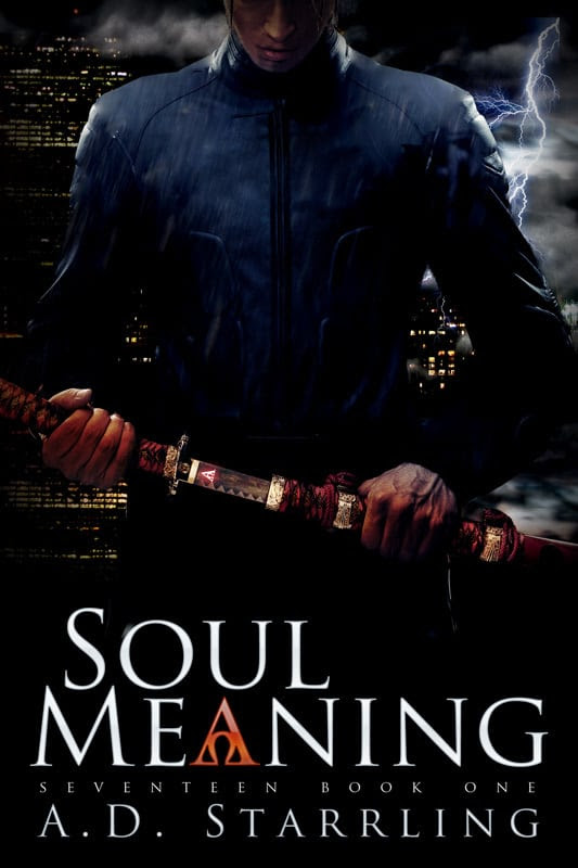 Soul Meaning Cover