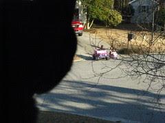 Maggie keeping an eye on the neighborhood kids (and dog)