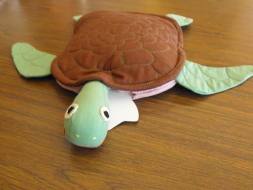 Turtle Hottie Swimming