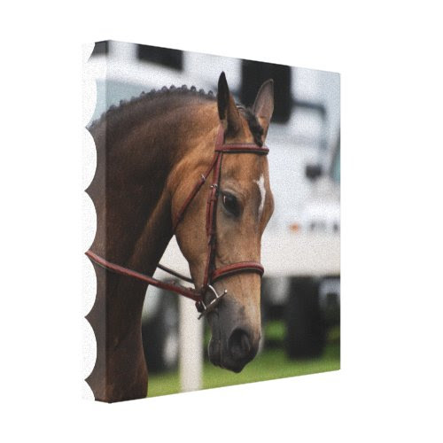 Sweet Pony Canvas Print