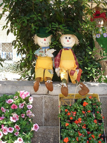 Dolls and plants