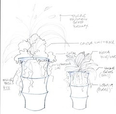 Drawing idea for Container Plantings