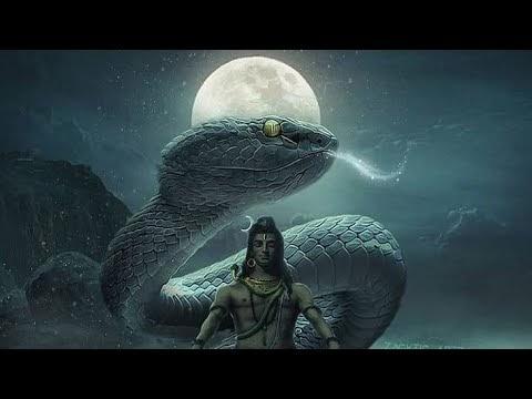 200+ Best Mahadev, Mahakal, shiv sanker, Bholenath Status Video ..download