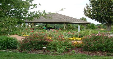 East Texas Arboretum. Athens, Tx   Home Town   Wedding