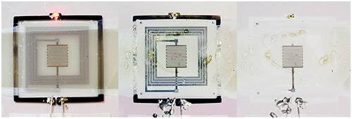 Electronica-Autodestruccion-White