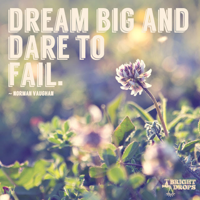 """""""Dream big and dare to fail."""" ~Norman Vaughan"""