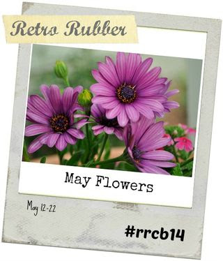 RRCB14