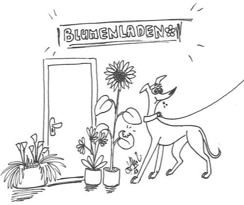 Comic-Whippet-Blumenladen