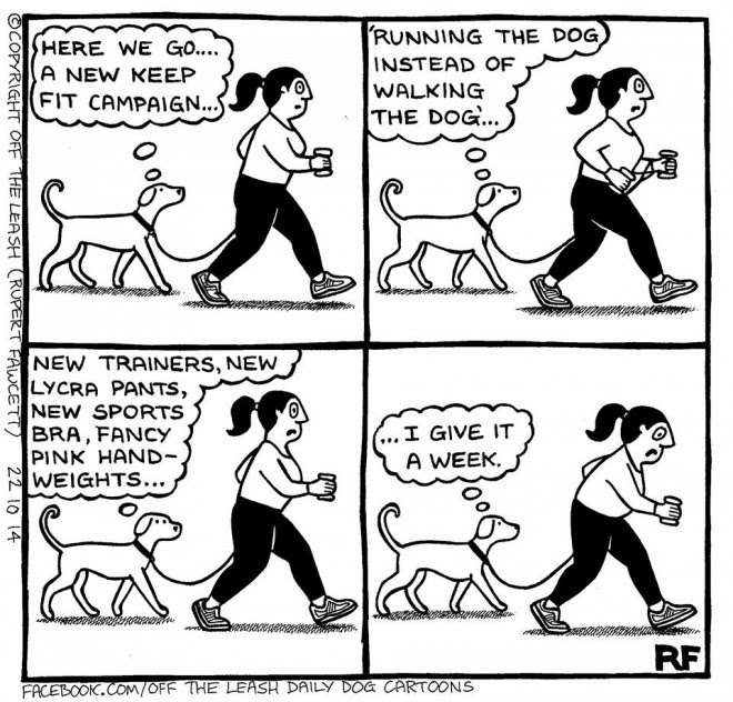 Off The Leash Dog Cartoons Off The Leash The New Year Fitness Campaign