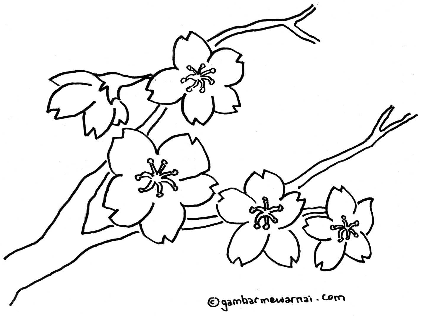 160 Gambar Ilustrasi Bunga Yang Mudah Digambar Gambarilus