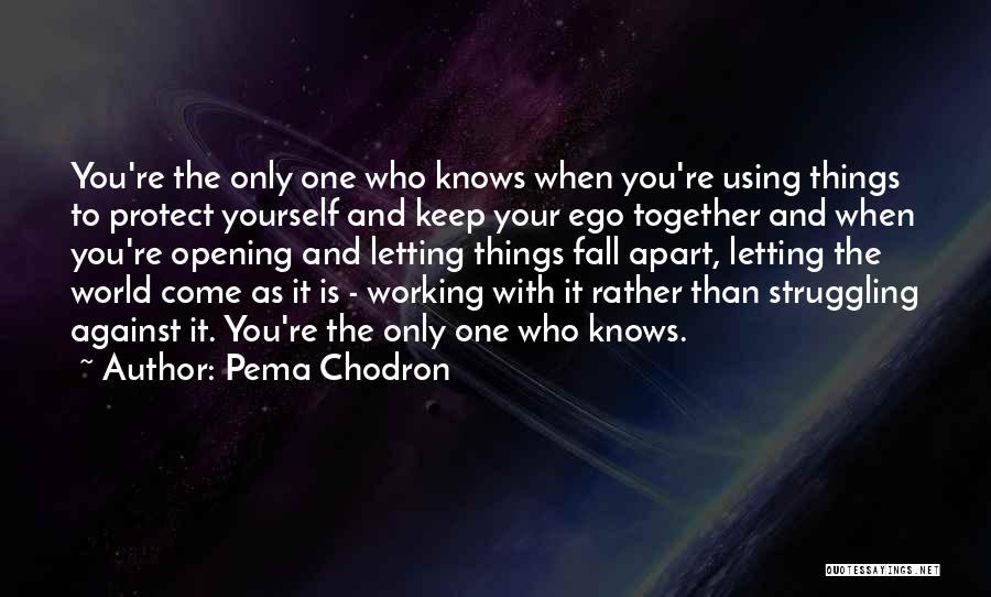 Pema Chodron Quotes Youre The Only One Who Knows When Youre Using