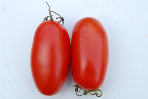 Saveol Torino Plum tomato from the supermarket