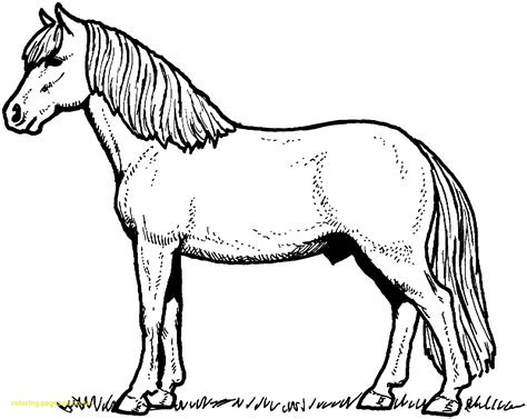 wild horse coloring pages  getcoloringscom