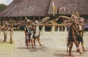 Top 31 Indonesian Tribes List  History and Cultures  Facts of Indonesia
