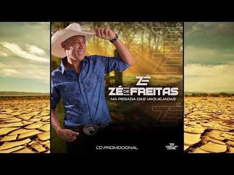 NOVO CD ZÉ DE FREITAS 2021 - CD COMPLETO