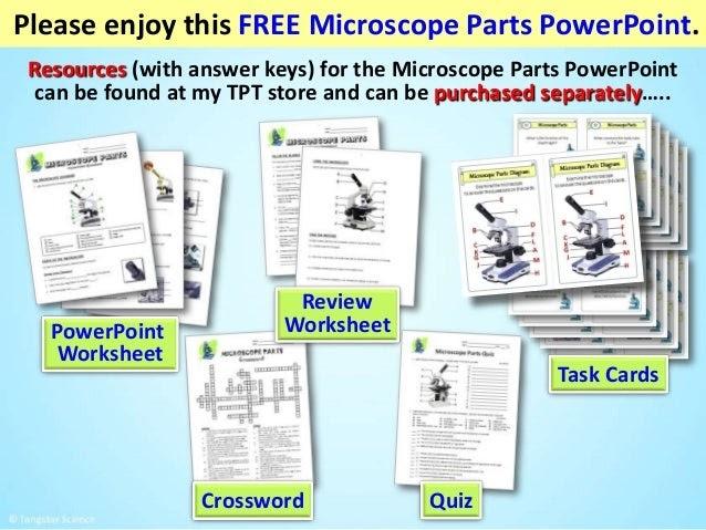 Microscope Review Worksheet Answer Key - Micropedia