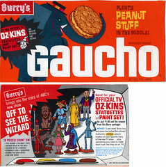 Gaucho Cookie Box