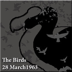 2013.03.28 The Birds