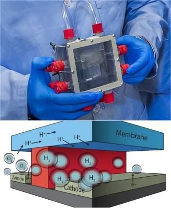 Fotossíntese artificial: eficiência das folhas artificiais