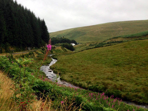 soarymynydd-in-valley.jpg