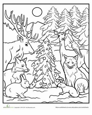 woodland habitat coloring page coloring pages