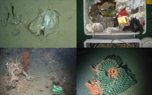έρευνα-που-σοκάρει-τόνοι-σκουπιδιών-συσσωρεύονται-στο-βυθό-της-θάλασσας