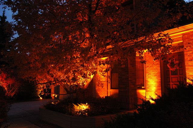 Celebrate Halloween or Support the Denver Broncos with Orange Lens Covers for Your Landscape