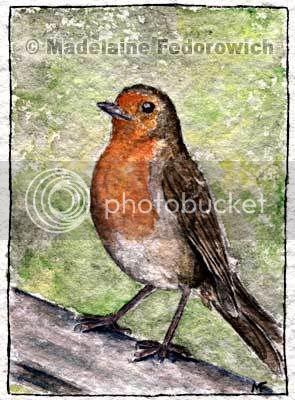 Standing Proud Robin Bird ACEO