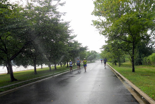 Sprinklers at Hains Point