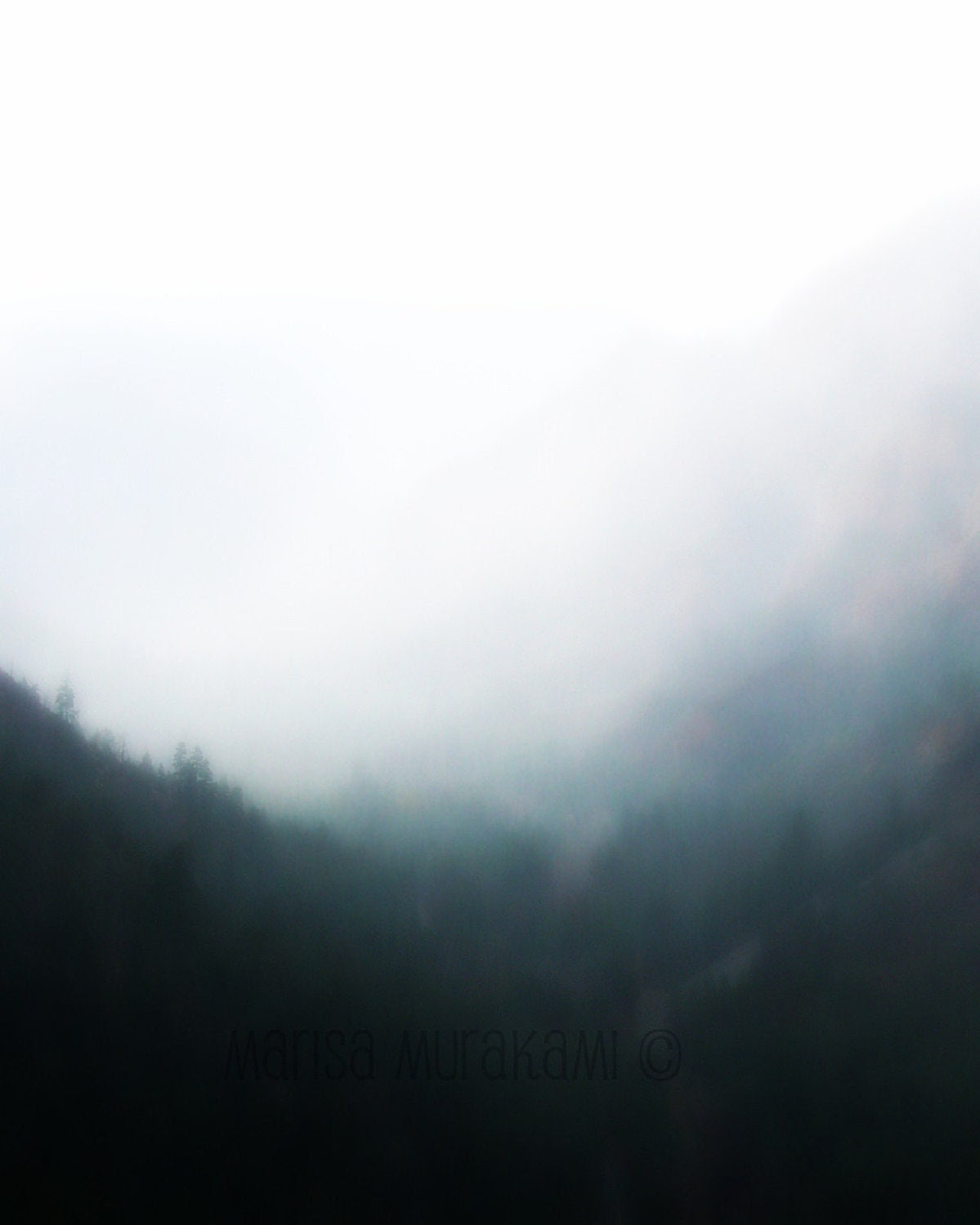 Dream like / Fog / Nature / Abstract / Forest / Soft / Gray / Dark Green - sukoshishop