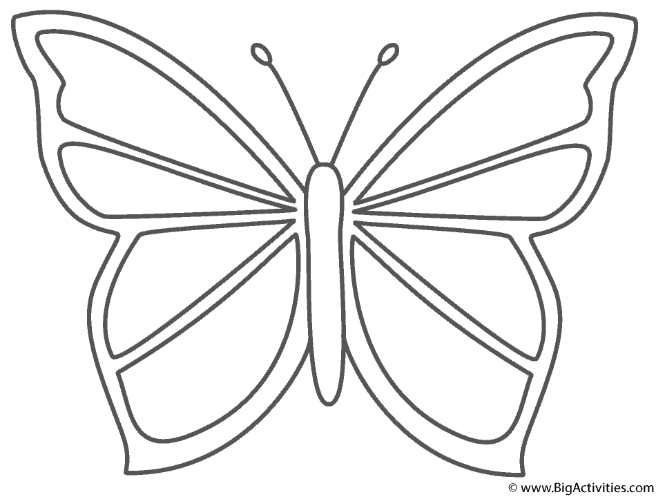 Beautiful Butterfly - Coloring Page (Insects)