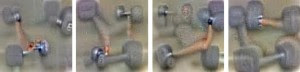 What an ANN thinks dumbbells look like, from training with photos.
