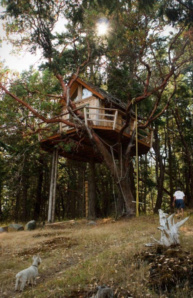 24 Rumah Pohon Unik Dan Indah Seperti Di Negeri Dongeng Yang Ada Dalam Kehidupan Nyata Blog Unik