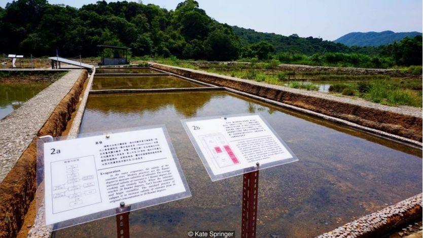 Việc làm sống lại các ruộng muối đã được Unesco ghi nhận là nỗ lực bảo tồn di sản