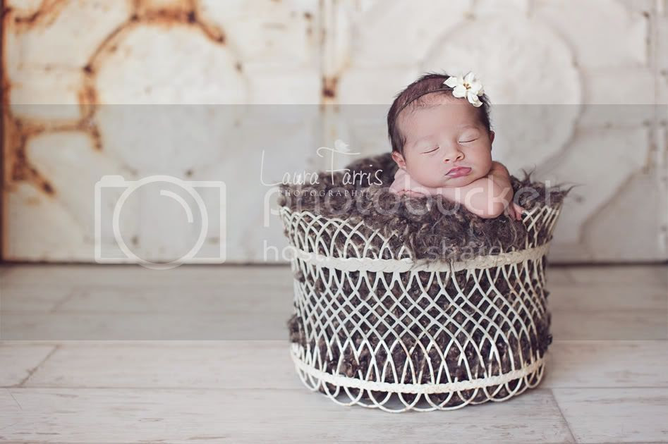 idaho newborn photographer