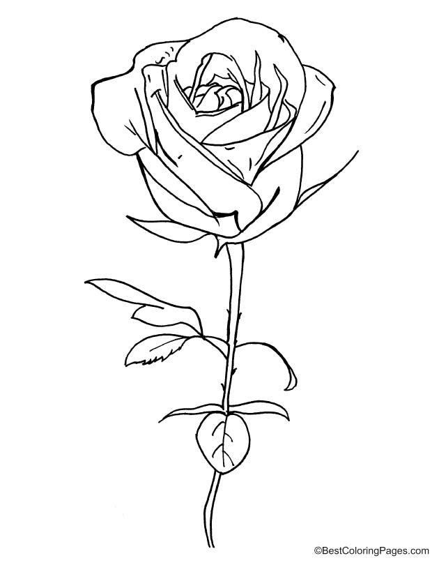 step 18 ariana grande coloring pages