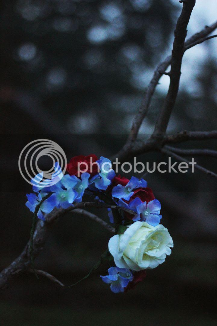 photo IMG_8812_zps47a89844.jpg