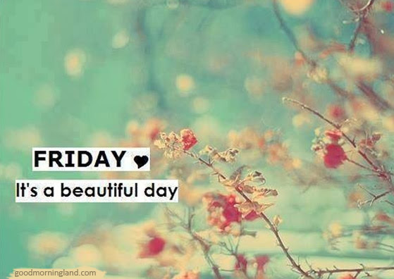Friday Whatsapp Good Morning Images Quotes Wishes Messages