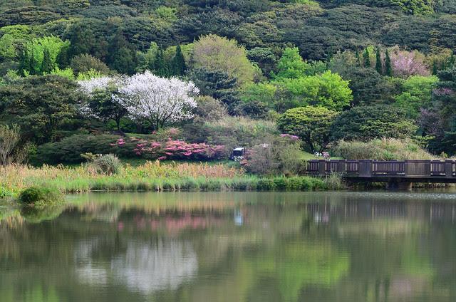 2013.03.16 台北 / 大屯自然公園