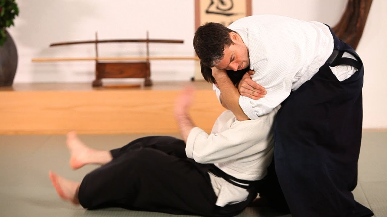 21+ Aikido Pictures