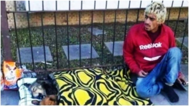 Homeless man gives shelter to street dogs in viral picture. Internet hearts it https://ift.tt/2Pe0TJa