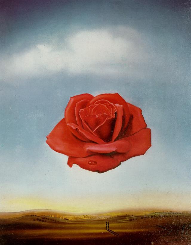 http://uploads8.wikipaintings.org/images/salvador-dali/meditative-rose.jpg