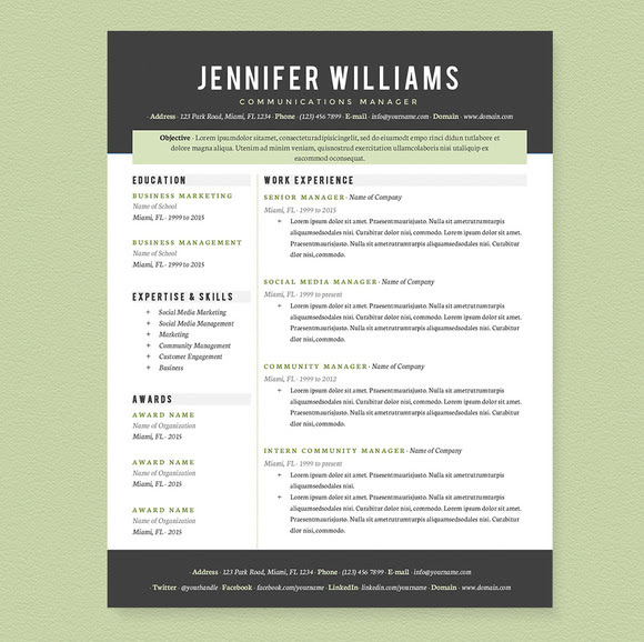 Resume 2016: Professional Resume Templates