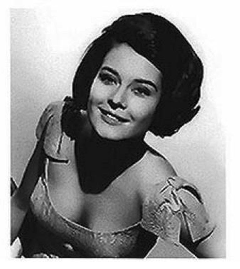 Diane Baker Wren