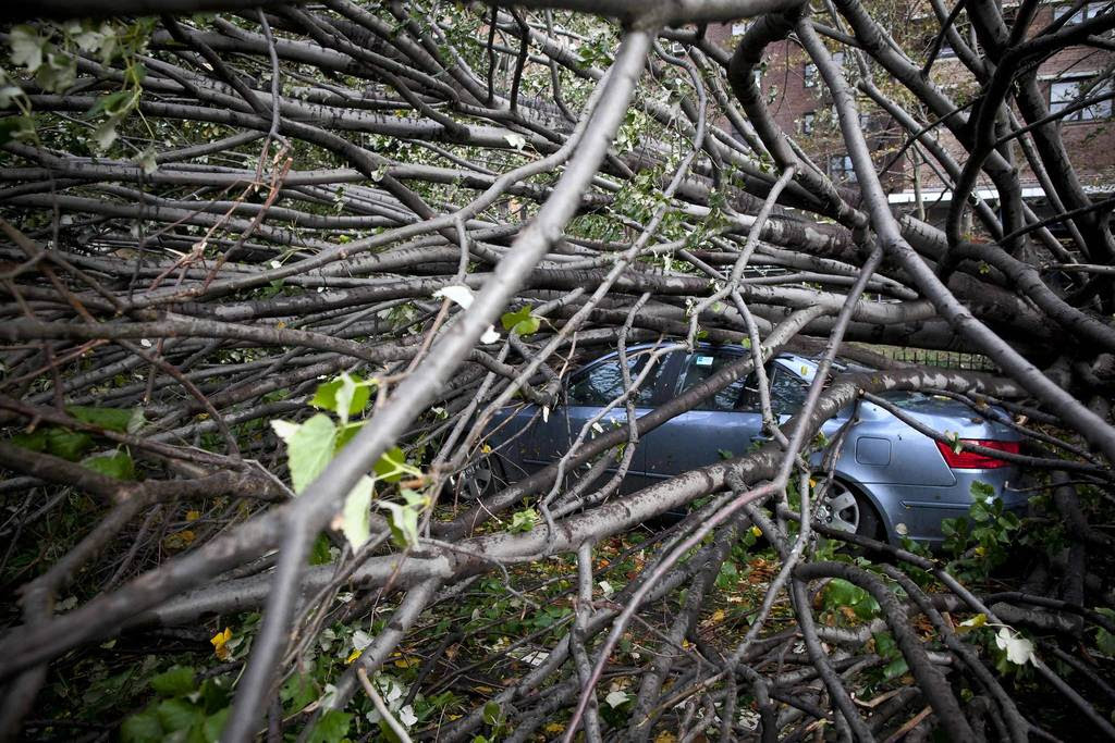 A car is crushed under a fallen tree in the Lower East Side in the aftermath of Hurricane Sandy in New York.