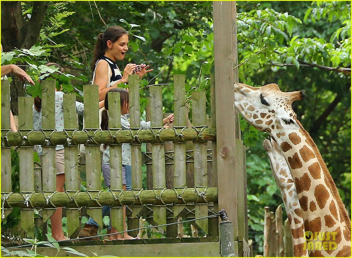 katie holmes suri feeds giraffes at bronx zoo 05