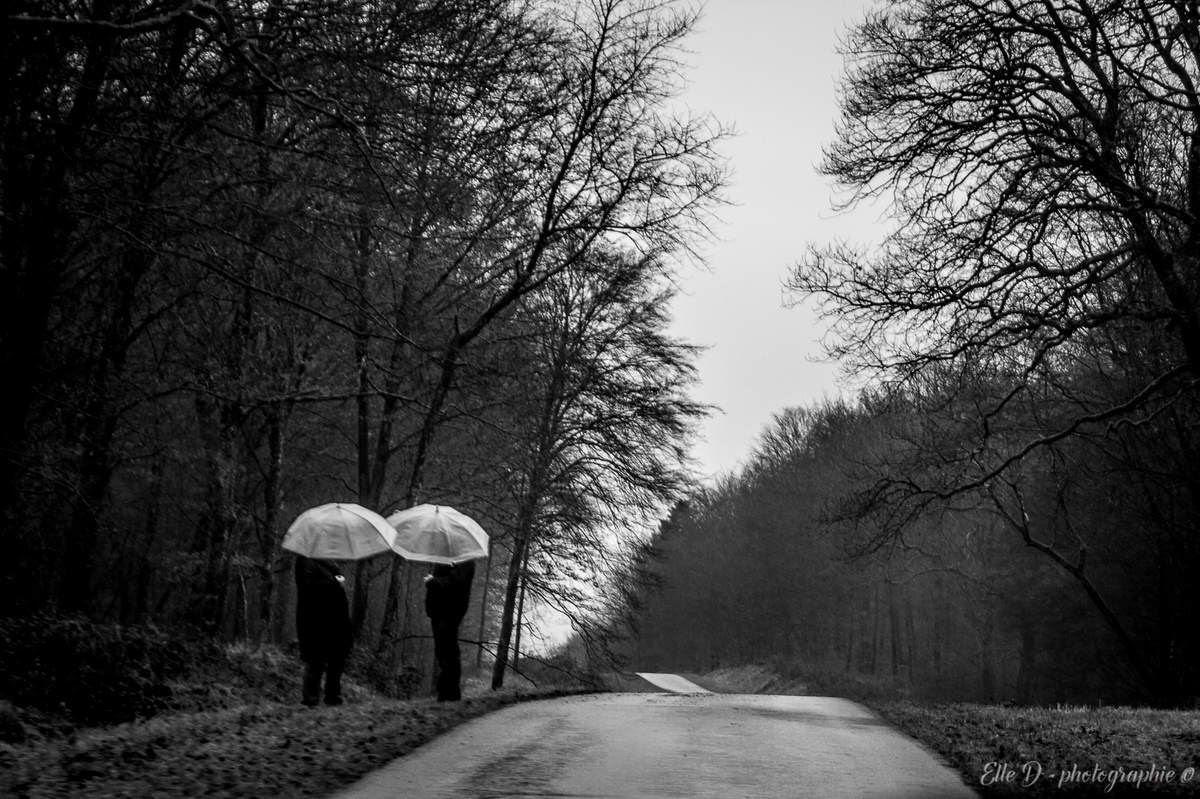 Noir Et Blanc Rêve De Photo