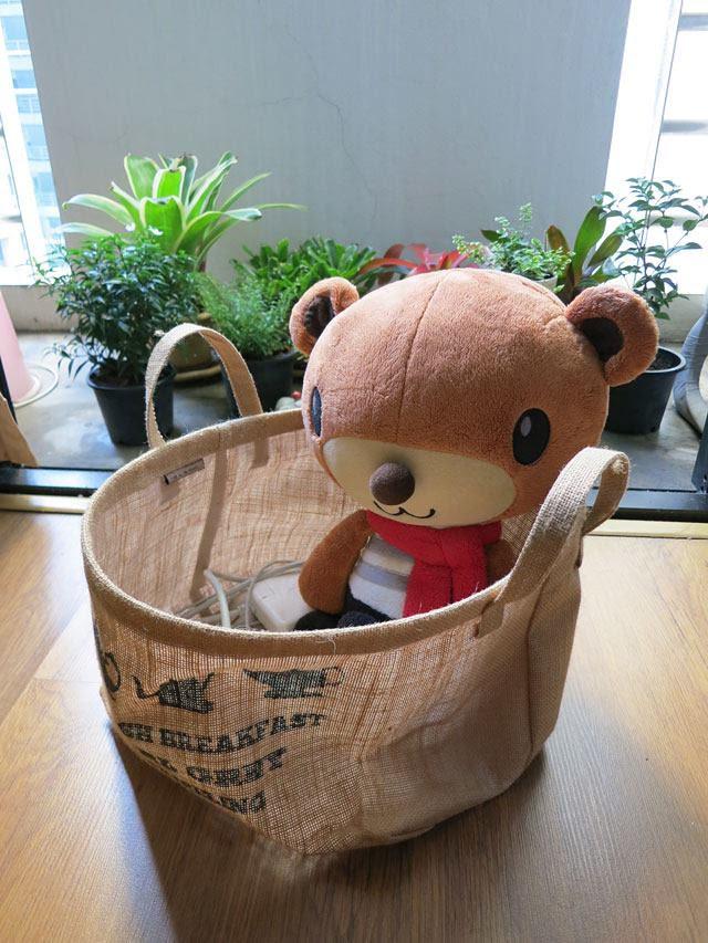 my bear at home