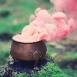 Caldero con hierbas y pétalos de rosa 150x150 Magia Wicca