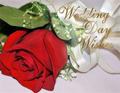 BEST GREETINGS: Free Anniversary Greeting Cards, Wedding